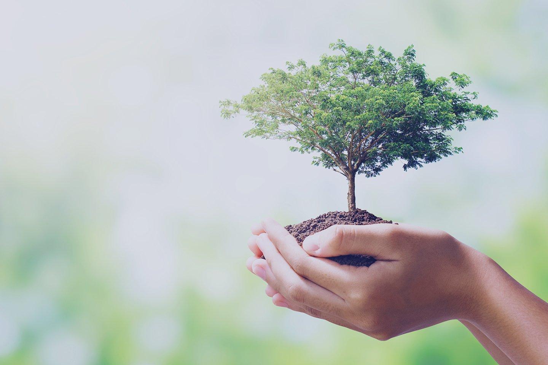 environment_EHL