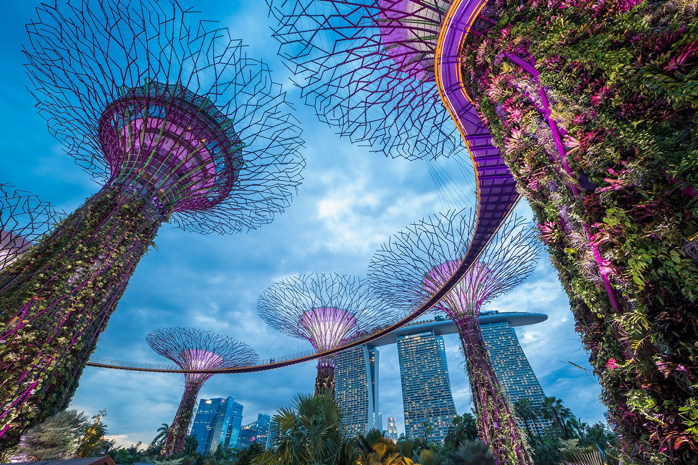 https://info.ehl.edu/hubfs/Singapore/Internship-singapore-1.jpg